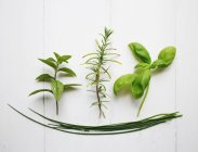 Green herbs on kitchen table — Stock Photo