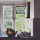 Legumes e ervas na janela da casa de campo — Fotografia de Stock
