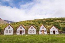Paysage naturel d'Islande avec maisons — Photo de stock