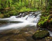 Cachoeira natural bela montanha — Fotografia de Stock