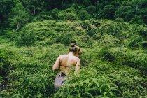 Задній вид чоловік і жінка Піші прогулянки в ліс зелений тропічних рослин, у — стокове фото