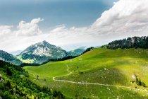 Paisagem de grama verde e montanhas contra céu nos Alpes — Fotografia de Stock