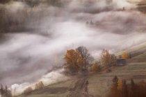 Nebel Nebel Tag auf Hügeln im Herbst — Stockfoto