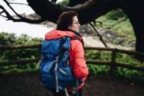 Rear view of woman with backpack in forest — Stock Photo