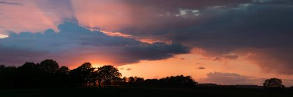 Silhouetted trees in field and colorful sky at sunset, panorama — Stock Photo