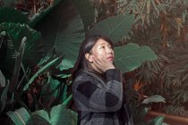 Young asian woman standing at big green palm leaves — Stock Photo