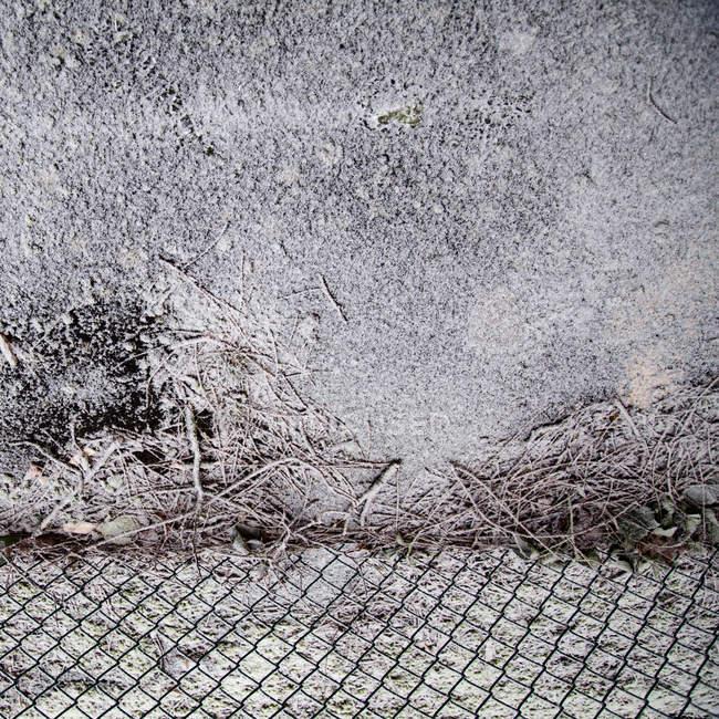 Detalhes de parede de edifício de concreto — Fotografia de Stock