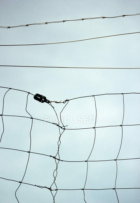 Wire netting fence and light blue sky — Stock Photo