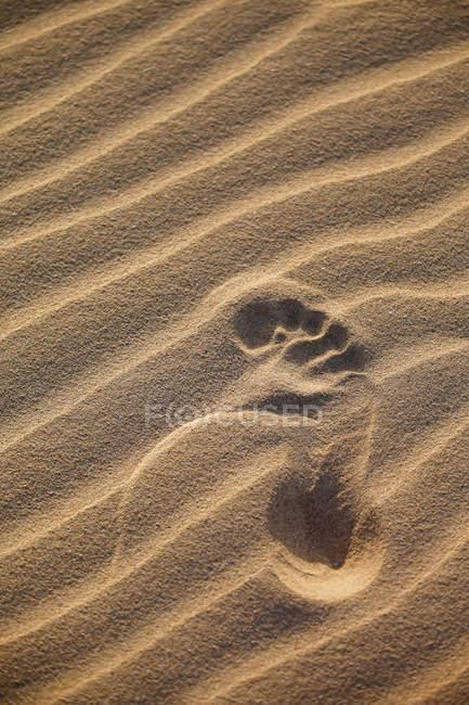 Footprint on sand dune — Stock Photo