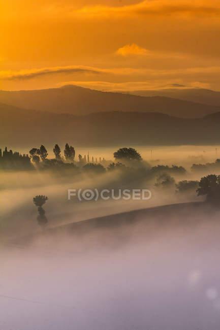 Горный пейзаж в тумане — стоковое фото