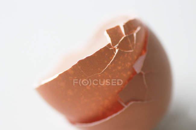 Marrons cascas de ovos rachadas isoladas no branco — Fotografia de Stock