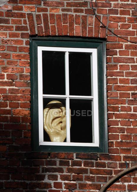 Дневное время мнение уха фигура в старые окна — стоковое фото