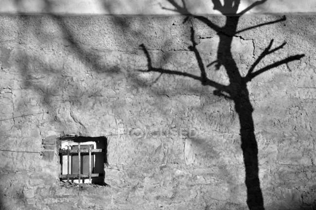 Colpo esterno della costruzione muro di facciata con piccola finestra e ombra dell'albero — Foto stock