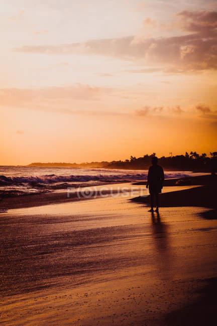 Жінка вигулює на заході сонця — стокове фото