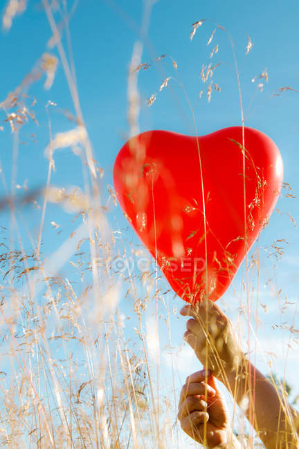 Close-up view of hands holding heart balloon in field — Stock Photo