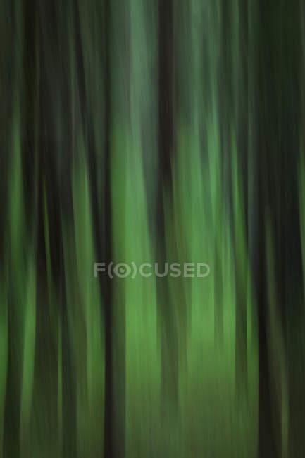 Abstrakten Hintergrund mit Motion blur — Stockfoto