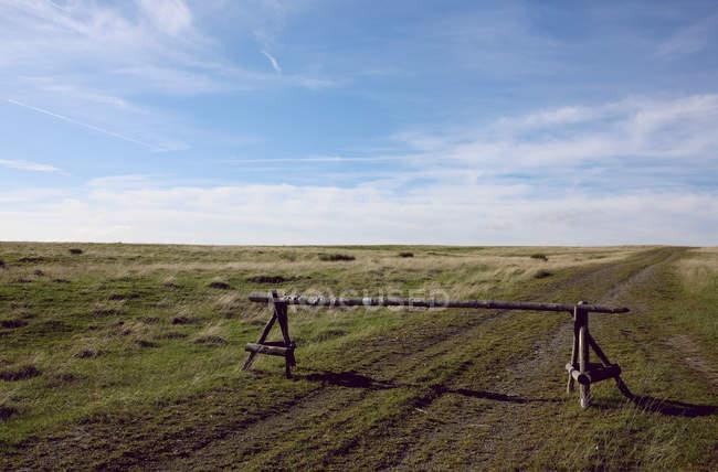 Природа пейзаж с видом на поле — стоковое фото