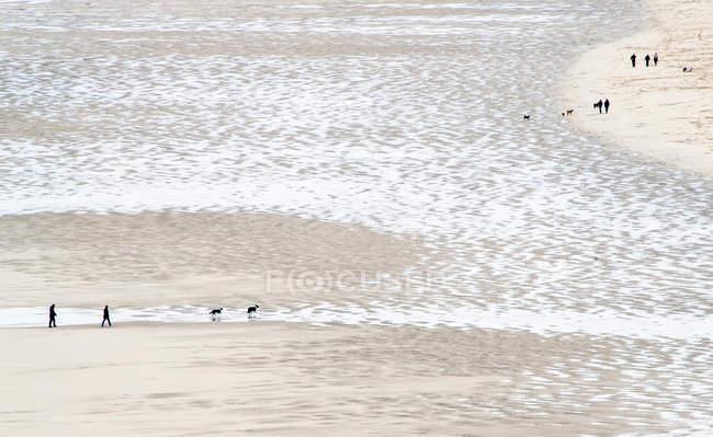 Sandy seashore aerial view — Stock Photo
