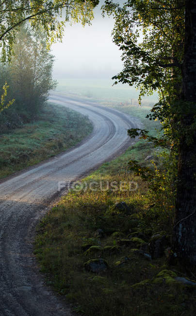 Footpath road in village forest — Stock Photo
