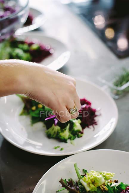 Plat de service de main de l'homme avec la verdure — Photo de stock