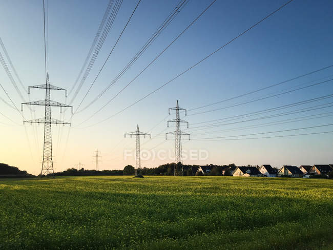 Nature landscape with field view and power lines — Stock Photo