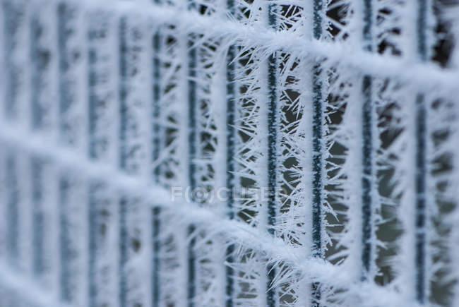 Estrutura de vedação congelado com gelo espinhoso — Fotografia de Stock