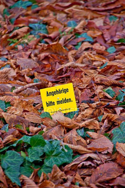 Желтая табличка с информацией в осенних листьев — стоковое фото