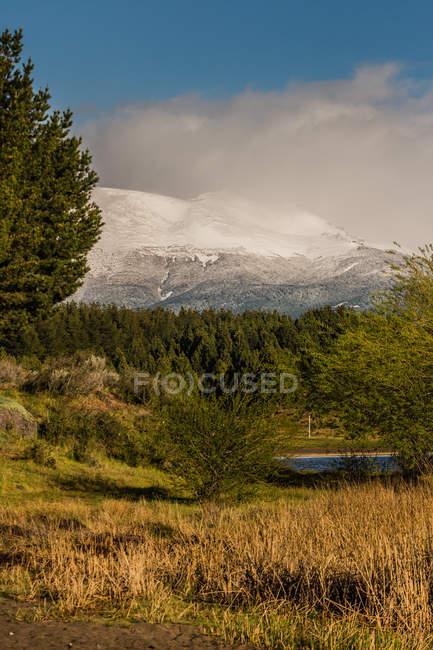 Hoch aufragende schneebedeckte Berggipfel — Stockfoto