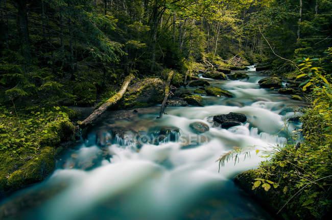 Поток реки среди скалистых берегов — стоковое фото