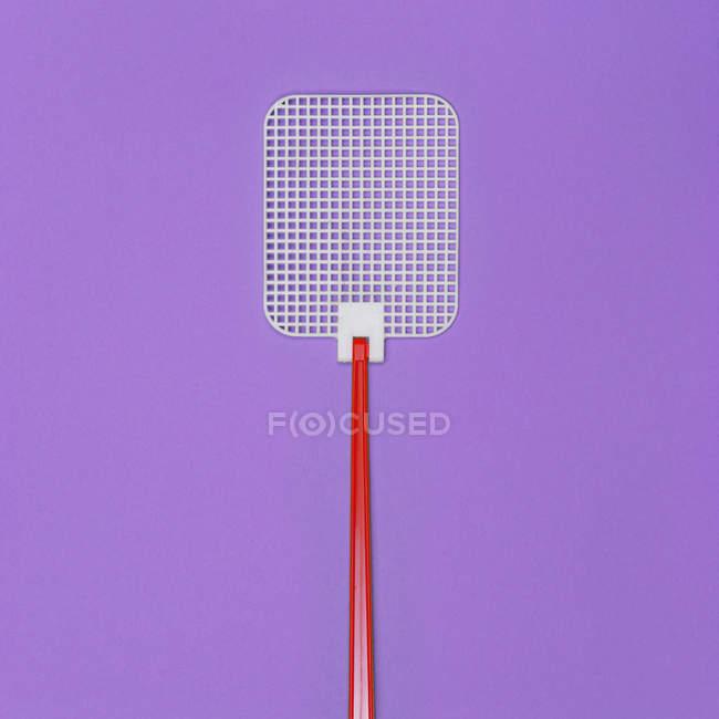 Вид сверху одной мухоловка на фиолетовый поверхности — стоковое фото