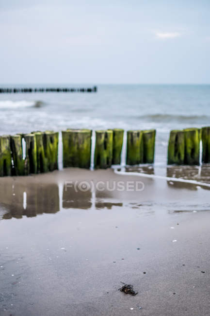 Holzstangen am Sandstrand — Stockfoto