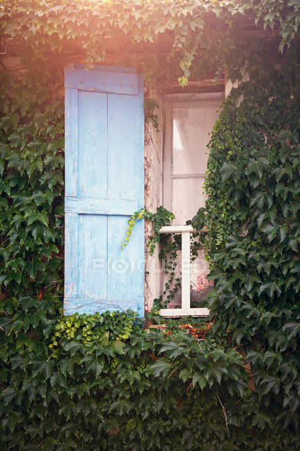 Window view with shutters — Stock Photo