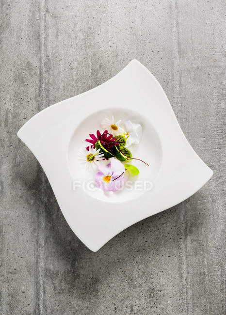 Edible flowers on white plate stock photo 157593876 edible flowers on white plate stock photo mightylinksfo