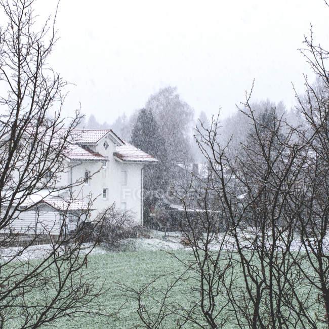 Temporada de invierno en el pueblo, yarda de la casa blanca en tiempo de nevadas - foto de stock