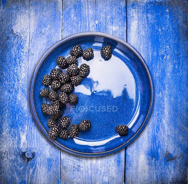 Сочные ежевикой в голубой шар — стоковое фото