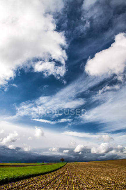 Пейзаж с видом на живописные поля — стоковое фото