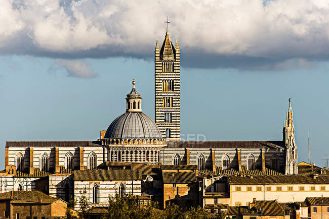Scenic cityscape with tower and church buildings, Siena, Italy — Stock Photo