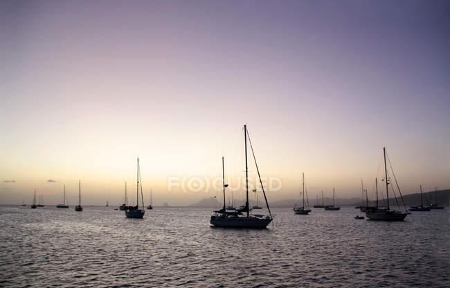 Yachts sailing in marina at sunset — Stock Photo