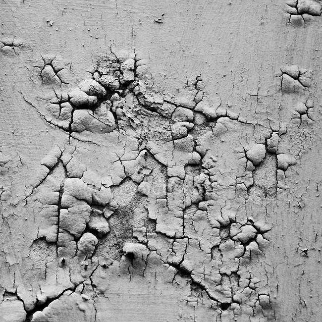 Aged old wall texture with solid stucco — Stock Photo