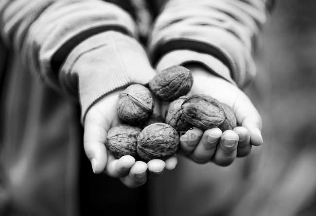 Child hands holding walnuts — Stock Photo