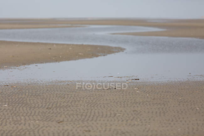 Seashore landscape with sandy beach — Stock Photo