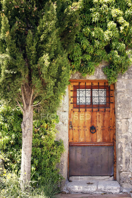 Building facade with door and green tree u2014 Stock Photo & Building facade with door and green tree u2014 Stock Photo | #157621078