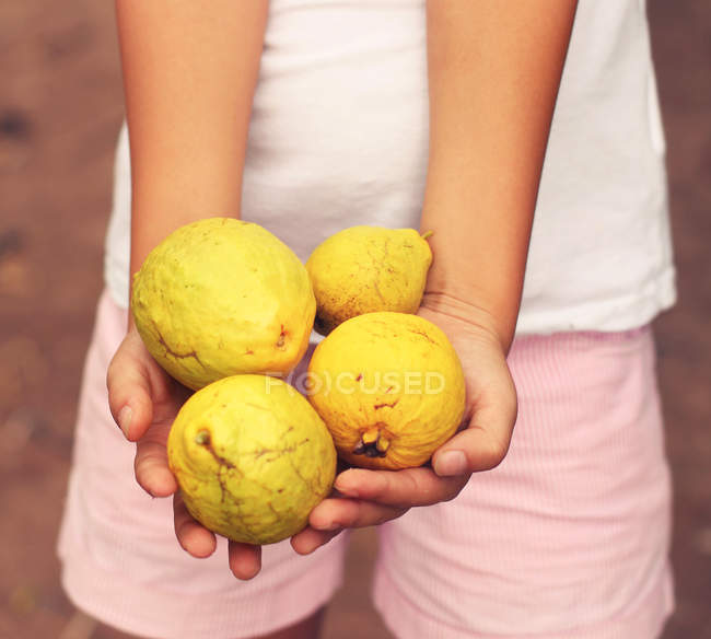 Cropped view of person hands holding lemons — Stock Photo