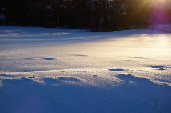 Schnee in der Sonne glitzernden — Stockfoto