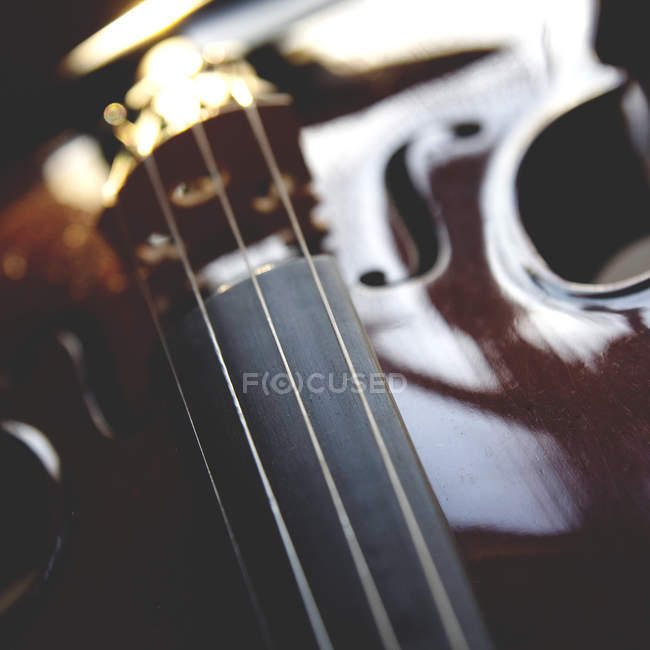 Detail of violin neck — Stock Photo