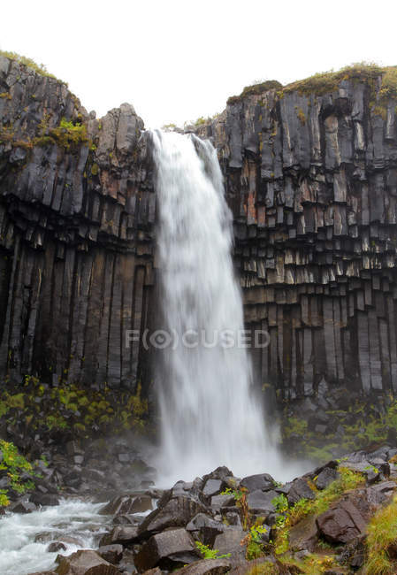 Svartifoss waterfall iceland — Stock Photo