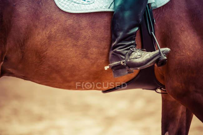 Nahaufnahme des weiblichen Fußes in den Steigbügeln auf Pferd — Stockfoto
