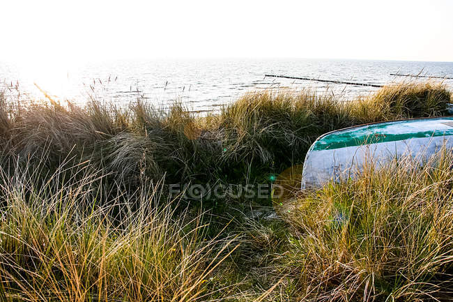 Barco na costa de gramínea — Fotografia de Stock