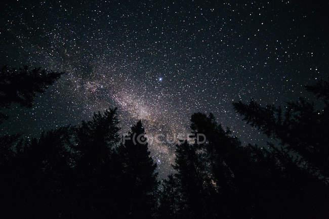 Синяя темная ночь небо с Млечного пути — стоковое фото