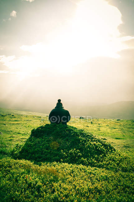 Mountain landscape with bushes and green moss — Stock Photo